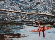 """Crane #11 (Rocky Mountain Creek)"", 16""x12"", Oil on Linen, Thinkspace Gallery, Dreams of Flight, SOLD"